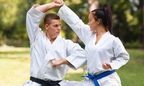 Capacitación para instructores de artes marciales
